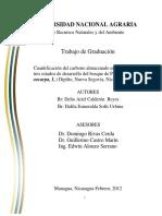 calculo de biomasa.pdf