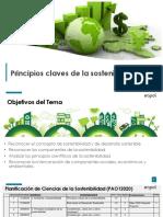1.1 Principios Claves de la Sostenibilidad GRP-1.pdf