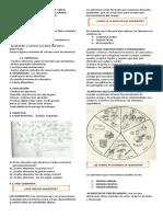 losalimentos-inf. ppt2 ciencias