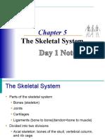 Ch.5skeletalSystem
