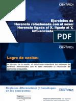 BMYG - SEMANA 11 - Práctica (Sesión 22).pdf