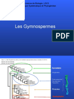 Les Gymnospermes.ppt