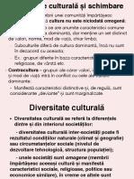 Prezentare 5-Diversitate culturala