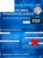 REGISTRO HIS MINSA PROMSA-RED FERREÑAFE.pdf