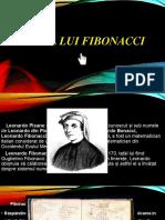 fdocumente.com_sirul-lui-fibonacci-567d9274ee266.pptx