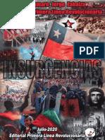 Insurgencias Por Jorge Zabalza PDF