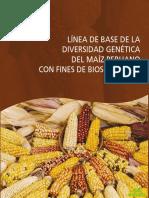 Linea-de-base-maíz-LowRes