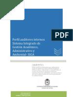 PERFIL_AUDITOR_INTERNO (1).docx