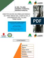 Presentación sustentacion TG-V02