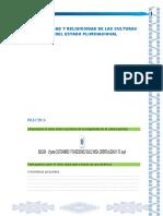 INSTRUMENTOS DE APOYO PDC.docx