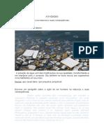 ATIVIDADE de HISTÓRIA Plataforma.docx