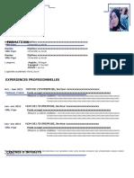 22-modele-cv-academique-bleu