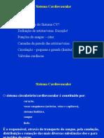 Sistema CV (1)