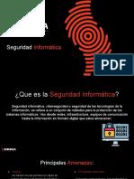 Seguridad Informática rimmsa.pptx