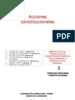 ACCIONES CONSTITUCIONALES