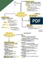 1.4. Estrutura Organizacional
