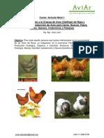 Programa-Avícola-Nivel-1 (1)