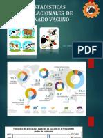 ESTADISTICAS poblacionales.pdf