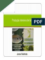 Producao-intensiva-de-lambaris.pdf