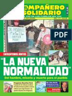 Revista Compañero Solidario  Numero 8 - Julio 2020