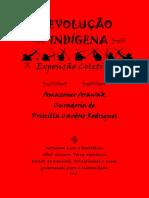 Revolução Indigena E-book Arte