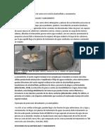 Afecciones del aceite usado de cocina en la red de alcantarillado y saneamiento