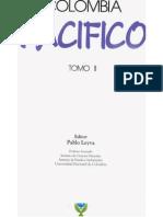 1993_Steiner (1993). Cetinelas de dos océanos Urabá.pdf
