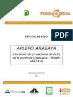 APLEPO-ARASAYA-final-2011