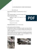 INFORME DE FALLA DE CHUMACERA Y EJE MIOTRIZ