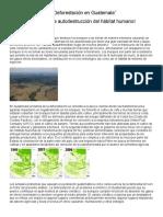 La Deforestación en Guatemala