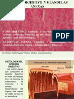 APARATO DIGESTIVO 2018-2.pdf
