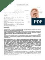 audiologia clase profe sandra