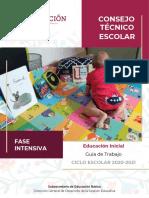 GuaFaseIntensivaInicialCTE2020-2021.pdf