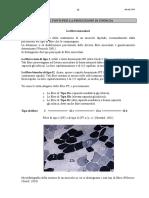 04 Fonti Energia.pdf