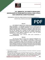 Tutela ambiental Derecho Brasilero
