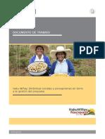 1_Documento-de-Trabajo-Final1_Haku_Winay.pdf
