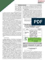 R.J.066-2020-SIS.pdf