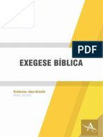 Exegese-Biblica---Prof-Alan-Brizotti.pdf