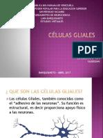 clulasgliales-170408034620