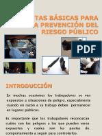 Pautas Basicas para la Prevencion del Riesgo Publico