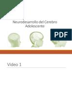 Neurodesarrollo del Adolescente (2)