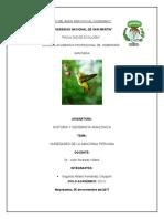 variedades de aves de la selva