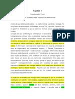 Capítulo 1_traduzido