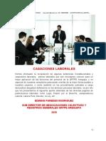 PLENOS LABORALES Y   SENTENCIAS_4.docx