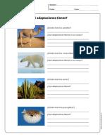 cn_cidelavida_3y4B_N14.pdf
