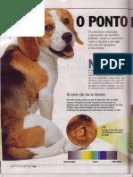 O Ponto de Vista do Cao - Revista Veja - 20091007 pg116-120