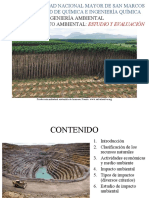 IA-CAPÍTULO 2-1  IMPACTOS AMBIENTALES, TIPOS Y REPRESENTACIÓN GRÁFICA (2019-II)