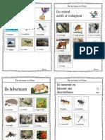 cp les animeau en hiver.pdf