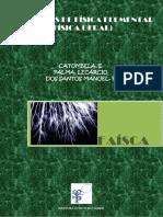 Faísca_-_Problemas_de_Física-1.pdf