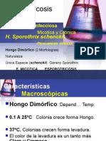 Esporotricosis